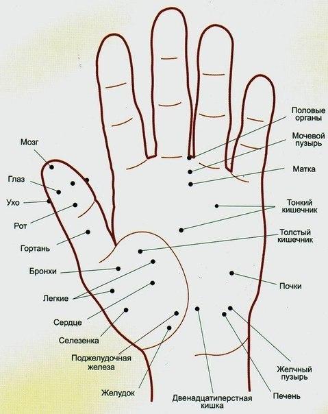 Волшебные точки на теле человека
